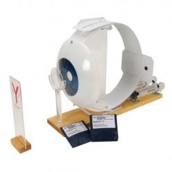 Simulatore per radiologia - Gomito - Trasparente - Erler Zimmer 7260