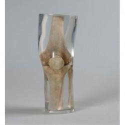 Bocca e naso di ricambio per simulatore medico di rianimazione Erler Zimmer R10054A