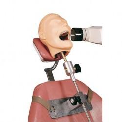 Manichino per la simulazione medica di radiologia dentale - R17001