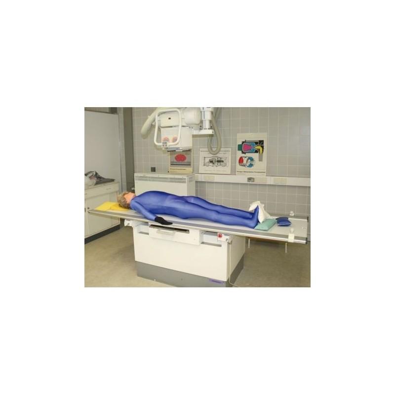 Simulatore per radiologia - Manichino a corpo intero per raggi X - Erler Zimmer 7200