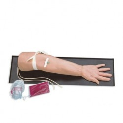 Braccio universale per l'addestramento alle iniezioni endovenose e prelievi di sangue Erler Zimmer LM74