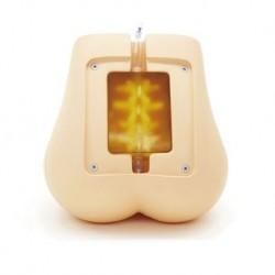 Simulatore per iniezioni epidurali e spinali 3B Scientific P61