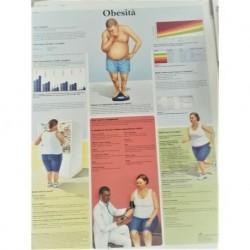 3B Scientific, tavola anatomica,  Obesità (cod, VR4460UU)
