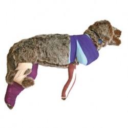 Manichino di cane per addestramento al bendaggio Rufus - VET4050